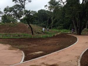 整備されつつある園路と墳墓