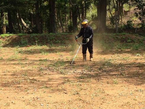 土が乾燥しており、土埃に悩まされました